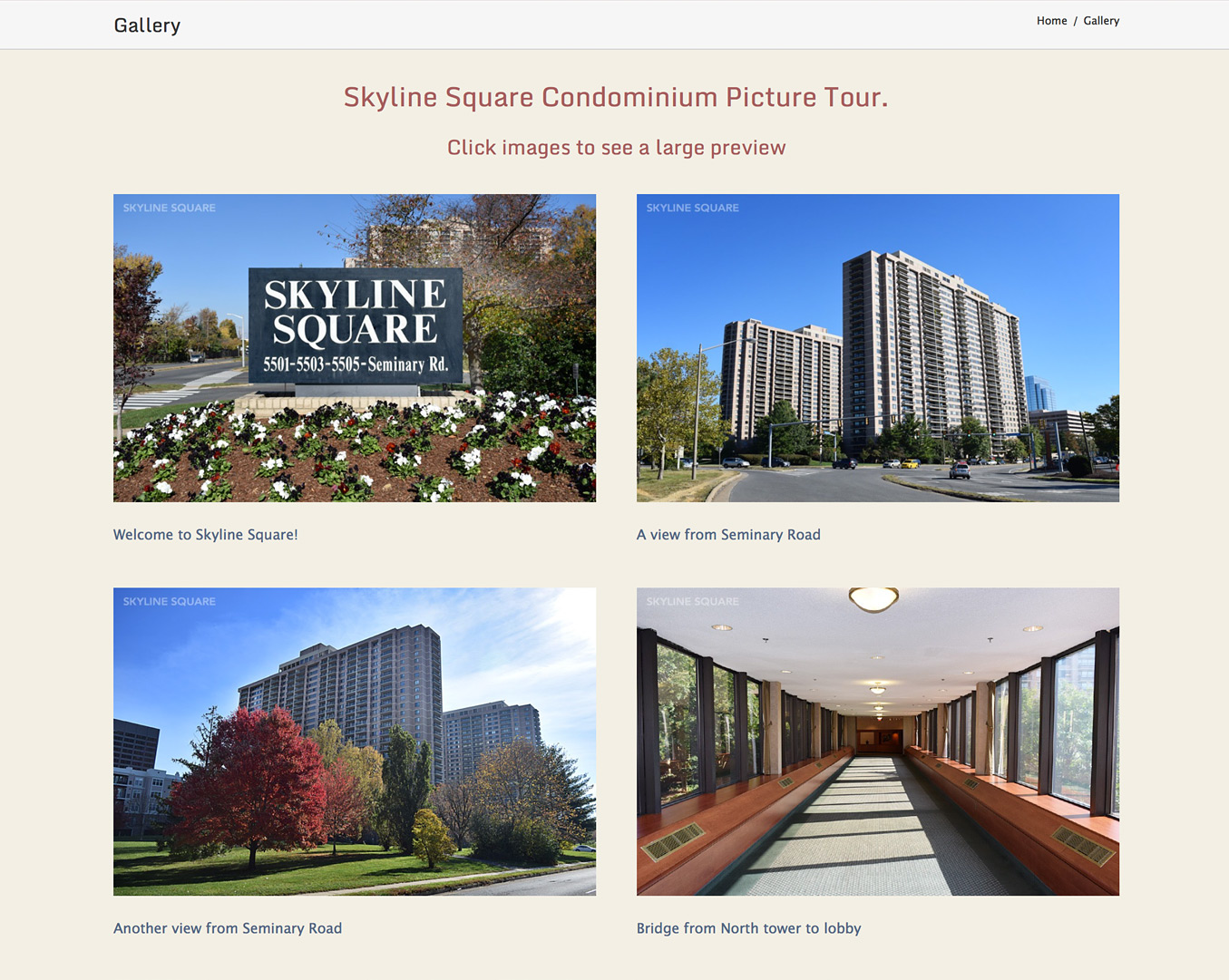 Skyline Square Condominium